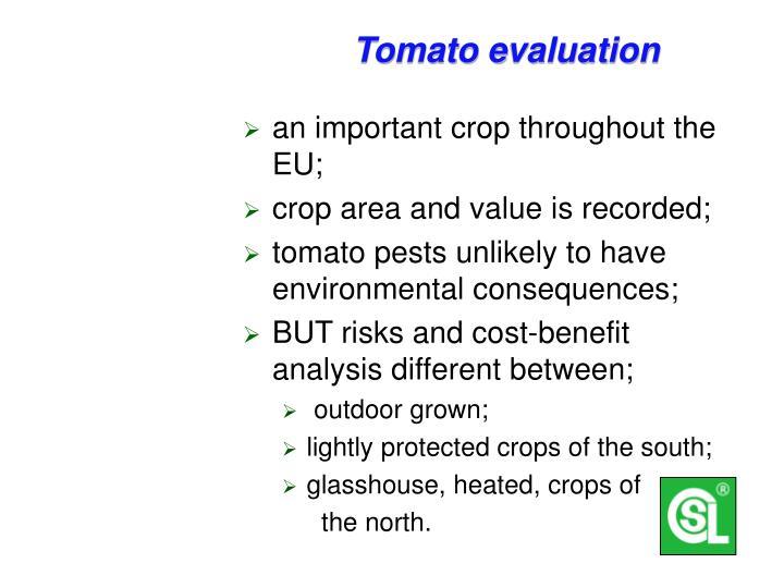 Tomato evaluation