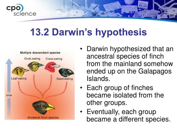 13.2 Darwin's hypothesis