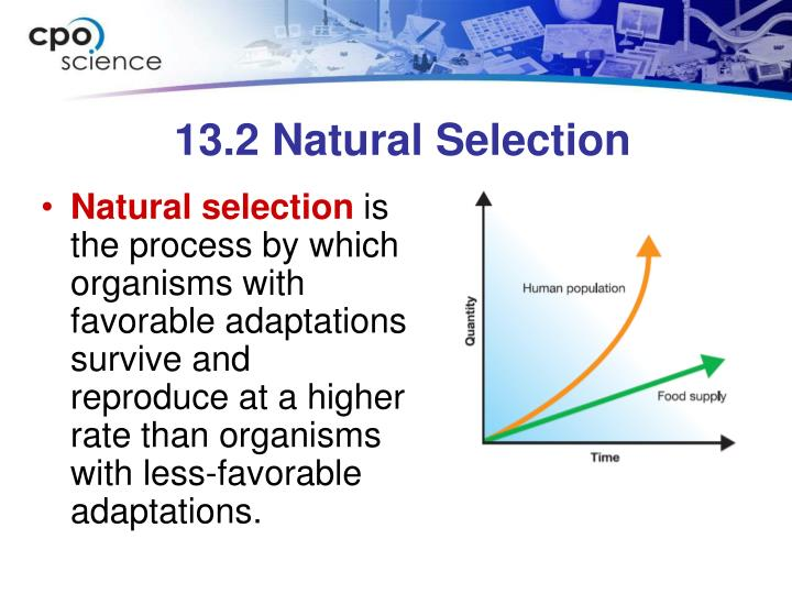 13.2 Natural Selection