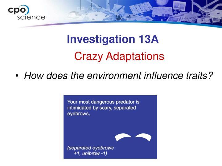 Investigation 13A
