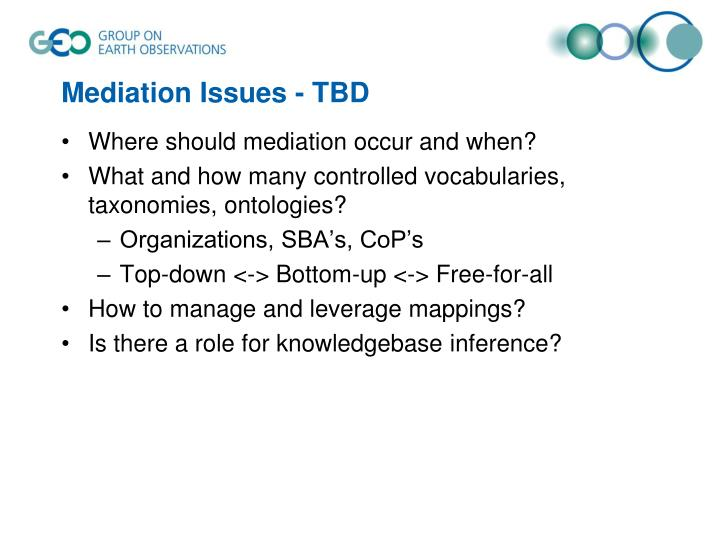 Mediation Issues - TBD