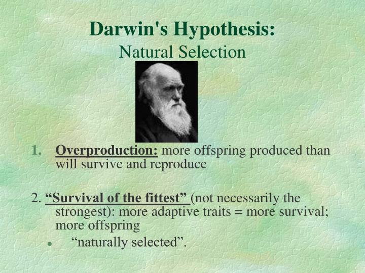 Darwin's Hypothesis: