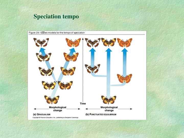 Speciation tempo