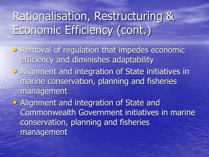 Rationalisation, Restructuring & Economic Efficiency (cont.)