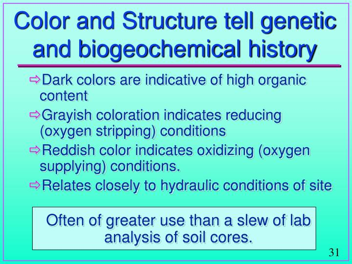 Color and Structure tell genetic and biogeochemical history