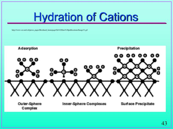 Hydration of Cations