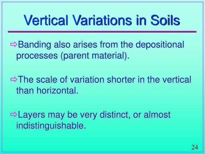 Vertical Variations in Soils