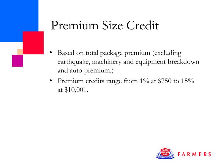 Premium Size Credit