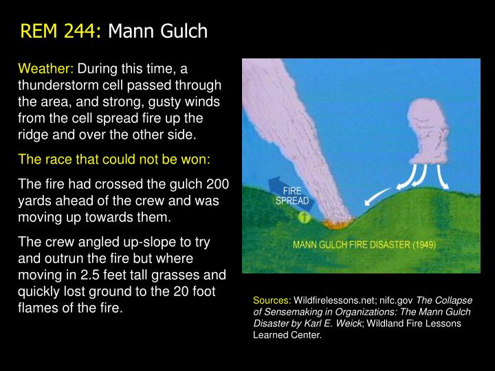 The mann gulch disaster discussion questions