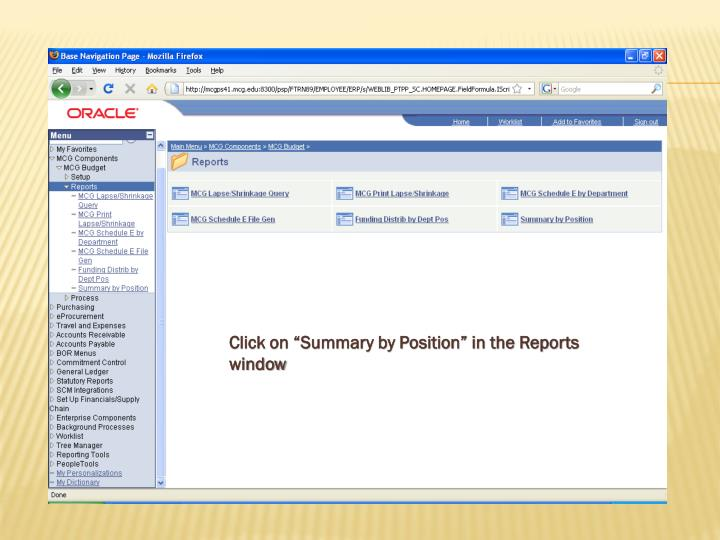"Click on ""Summary by Position"" in the Reports window"