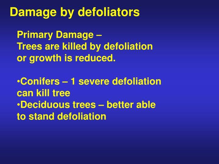 Damage by defoliators