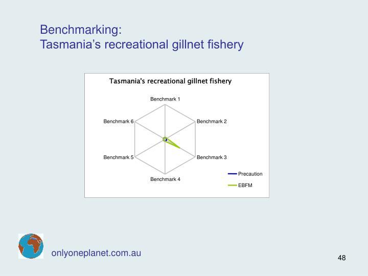 Tasmania's recreational gillnet fishery