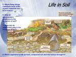 life in soil