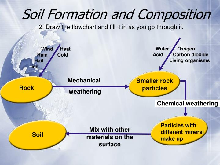 Soil Formation and Composition