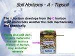soil horizons a topsoil