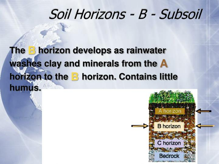 Soil Horizons - B - Subsoil