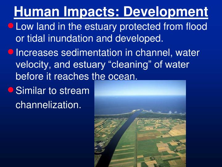 Human Impacts: Development