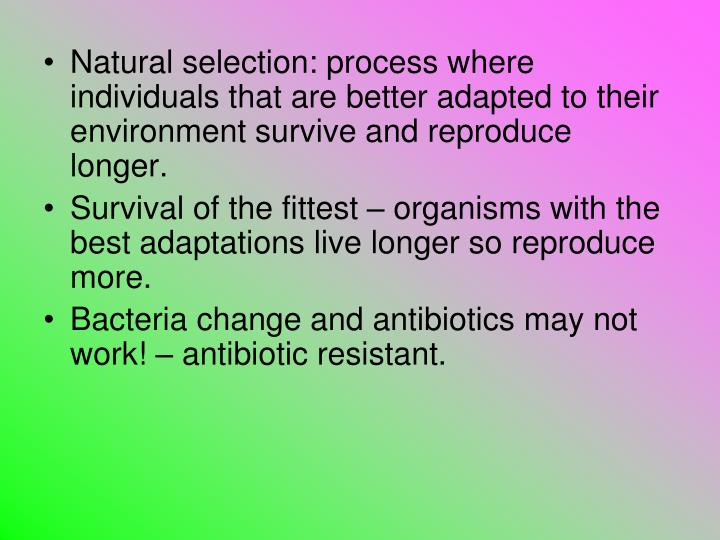 Difference Natural Selection And Survival Of The Fittest