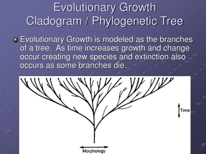 Evolutionary Growth