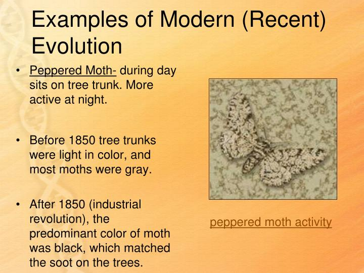 Examples of Modern (Recent) Evolution