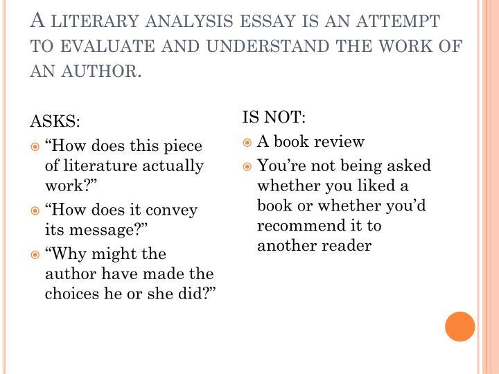a literary analysis essay