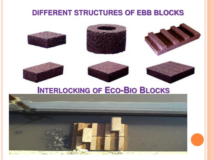 Interlocking of Eco-Bio Blocks