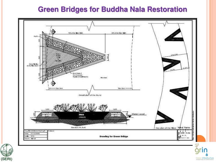 Green Bridges for Buddha