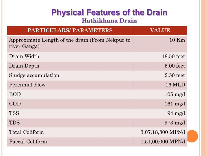 Physical Features of the Drain