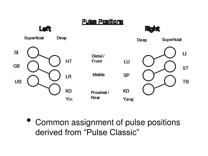 "Common assignment of pulse positions derived from ""Pulse Classic"""