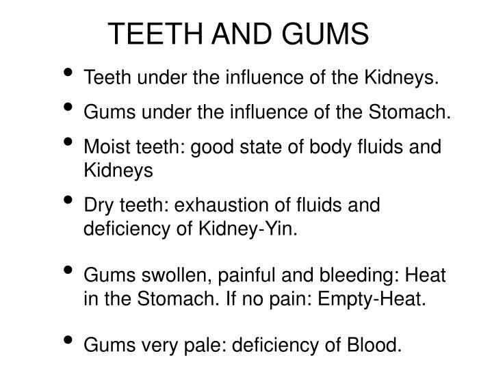 TEETH AND GUMS