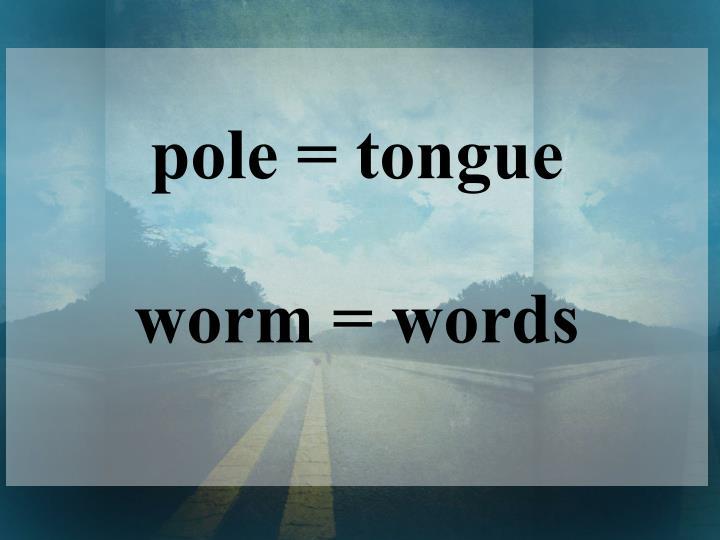 pole = tongue