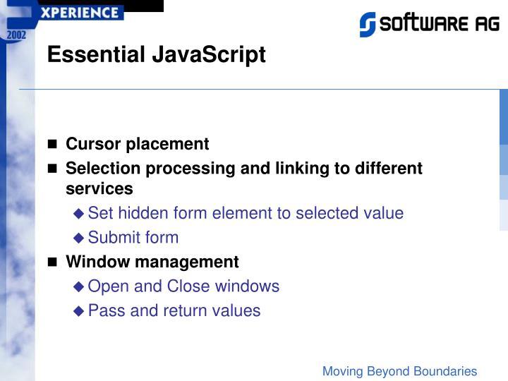 Essential JavaScript