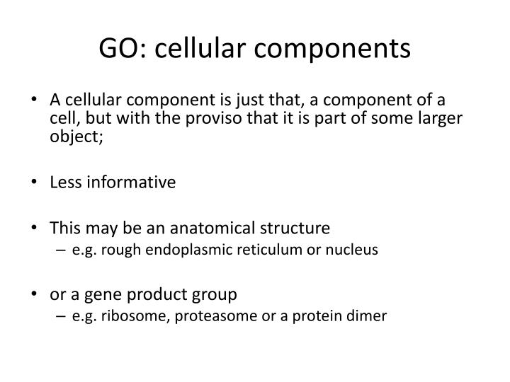 GO: cellular components