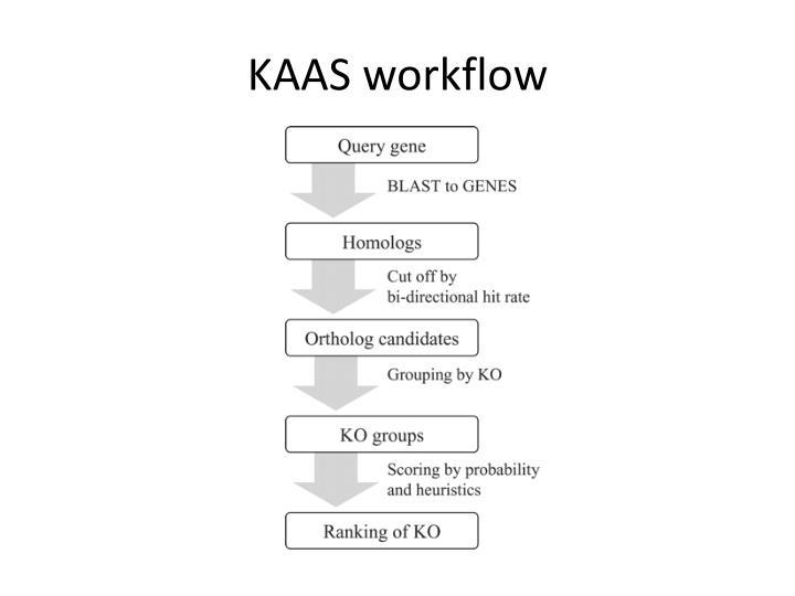 KAAS workflow