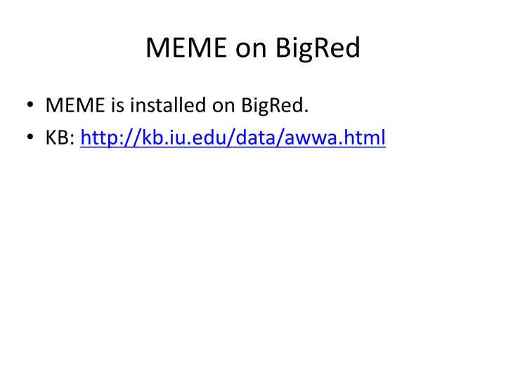 MEME on BigRed