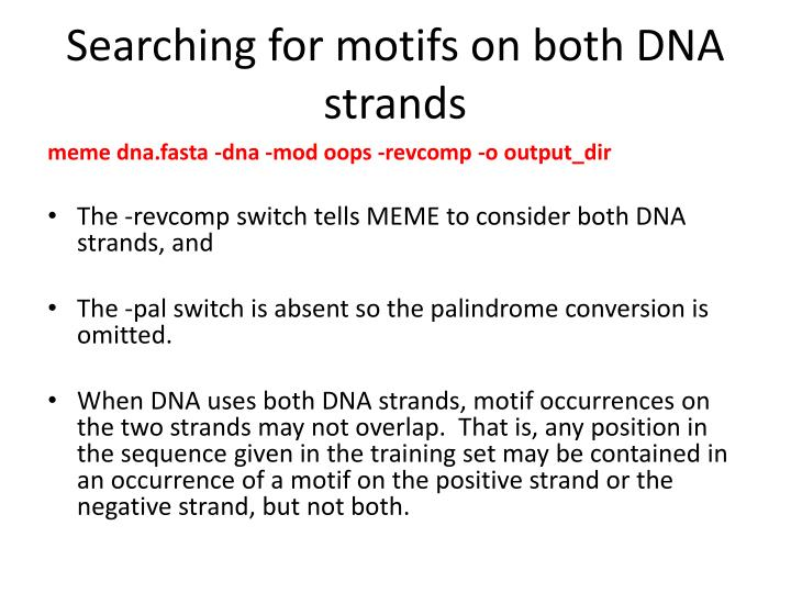 Searching for motifs on both DNA strands