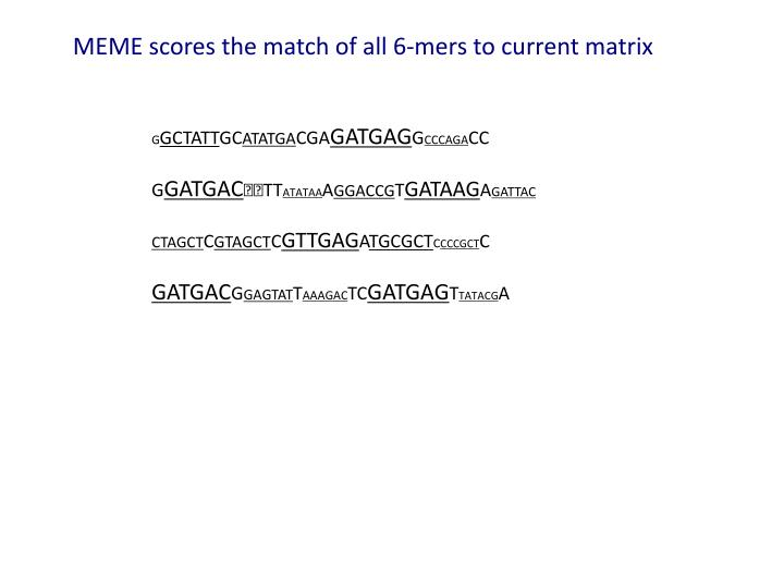 MEME scores the match of all 6-mers to current matrix