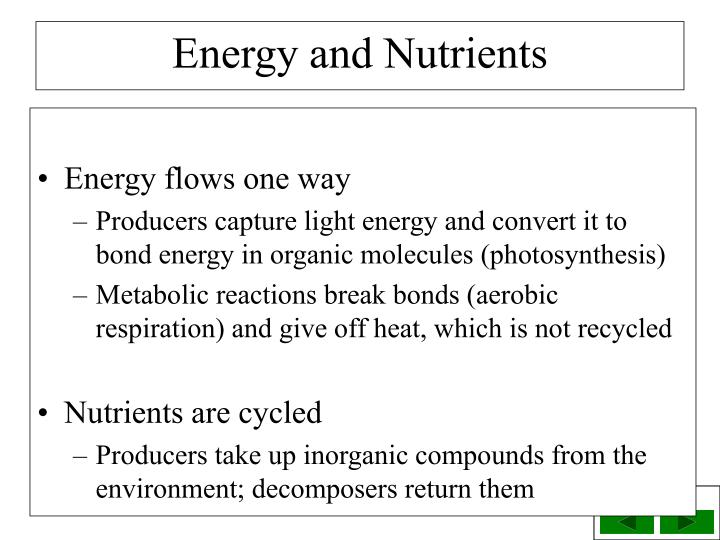 Energy flows one way
