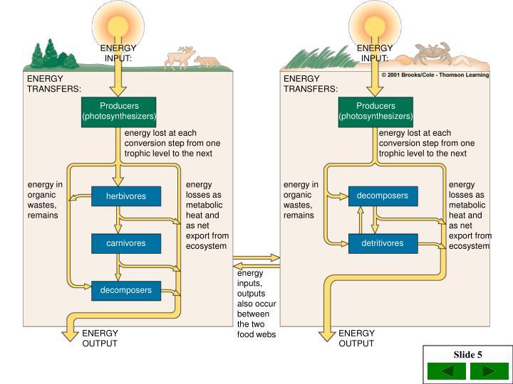 ENERGY INPUT: