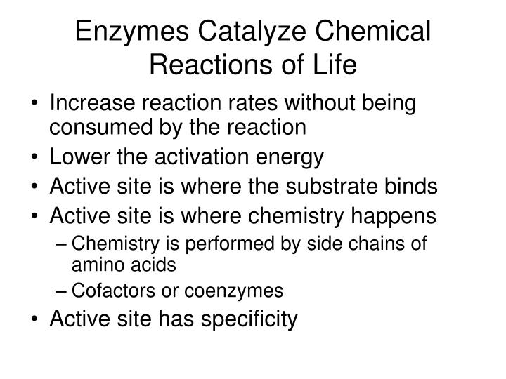 Enzymes catalyze chemical reactions of life