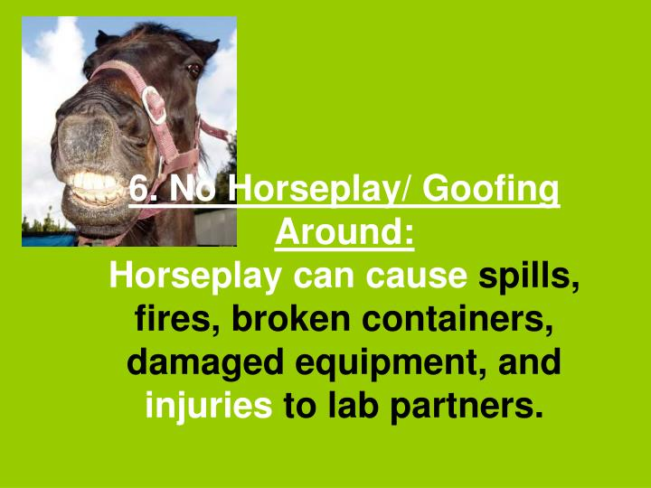 6. No Horseplay/ Goofing Around: