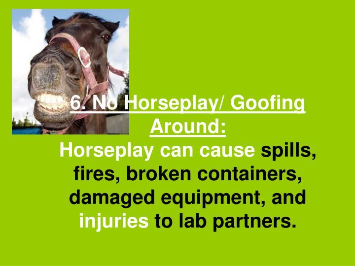 6. No Horseplay/ Goofing Around: