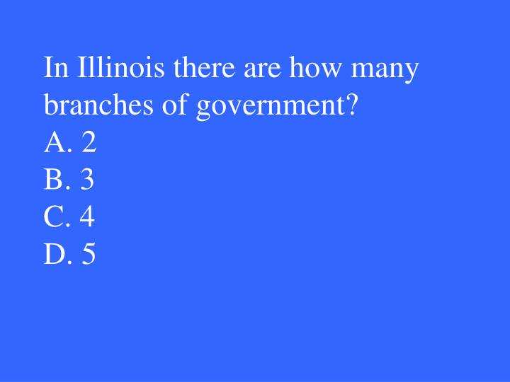 In Illinois there are how many branches of government?
