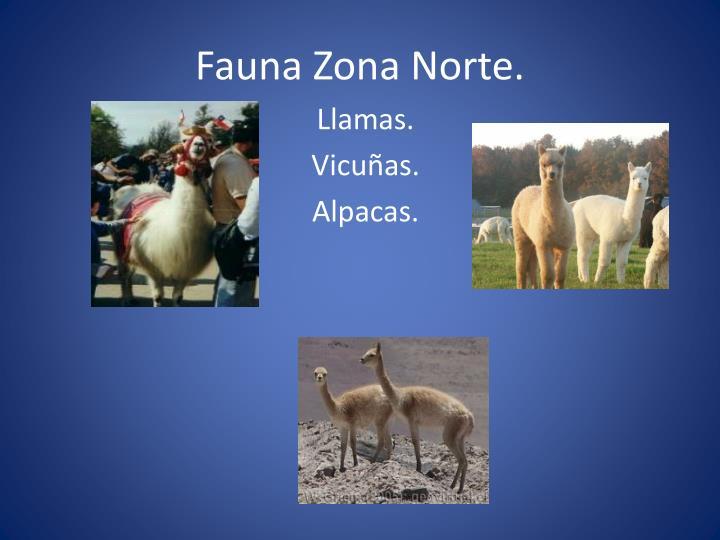 Fauna Zona Norte.