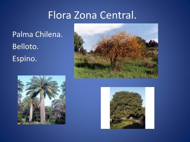 Flora Zona Central.