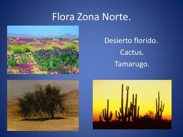 Flora Zona Norte.