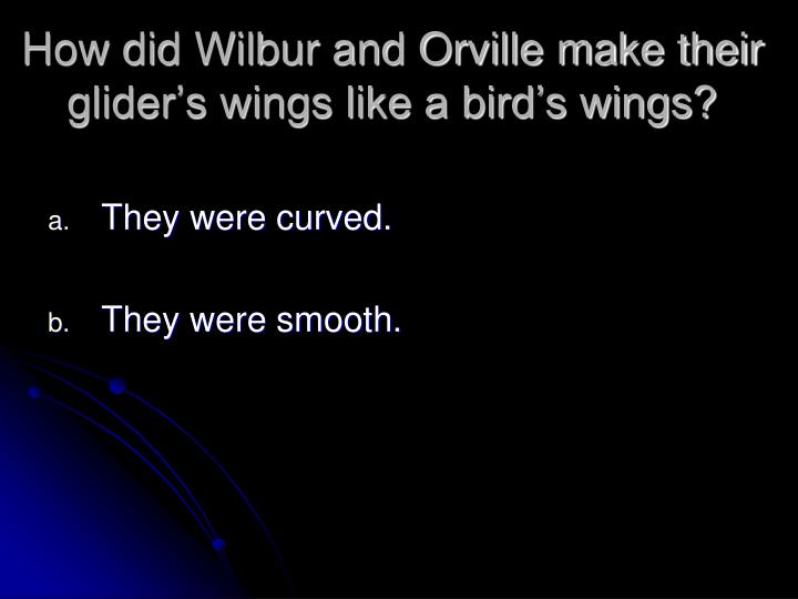 how to make bird wings that make you fly