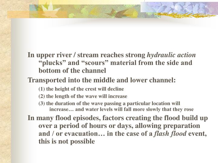 In upper river / stream reaches strong