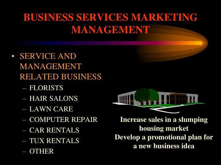 BUSINESS SERVICES MARKETING MANAGEMENT