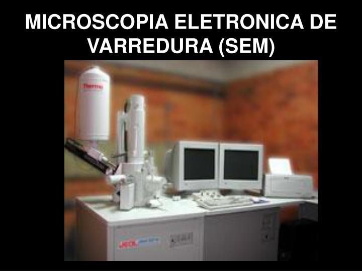 MICROSCOPIA ELETRONICA DE VARREDURA (SEM)